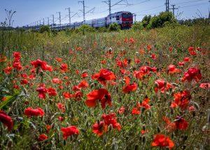 Russian Railways environmental plans