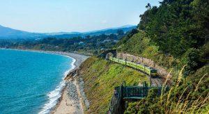 DART+ Coastal